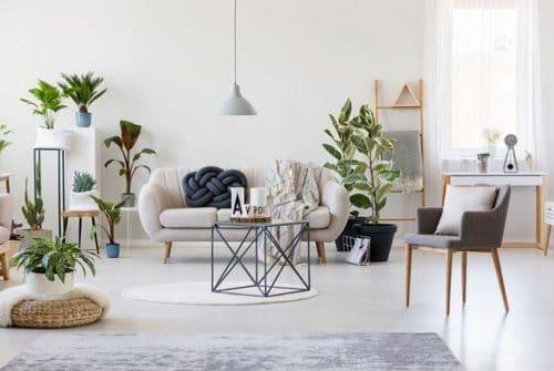 Les caractéristiques du logement meublé